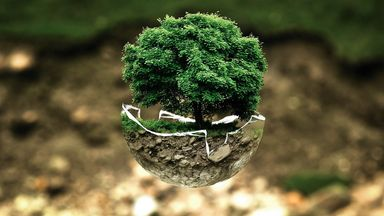 建立美好地球環境示意圖