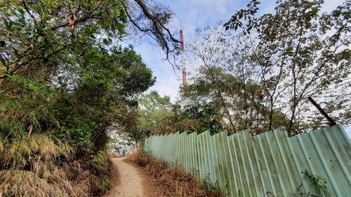 中間上面有基地台、右側有綠色鐵皮、左側有綠樹、中間下面有水泥步道
