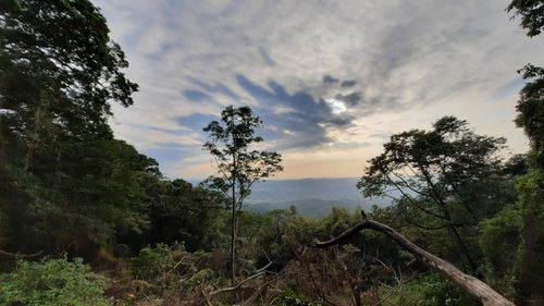 夕照亭景緻,上有白雲與一點藍天,中間有遠方山下的城鎮,下方則有綠處與枯木