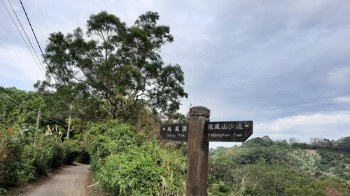 飛鳳園附近登山口,中間有指示牌,左側有條柏油路
